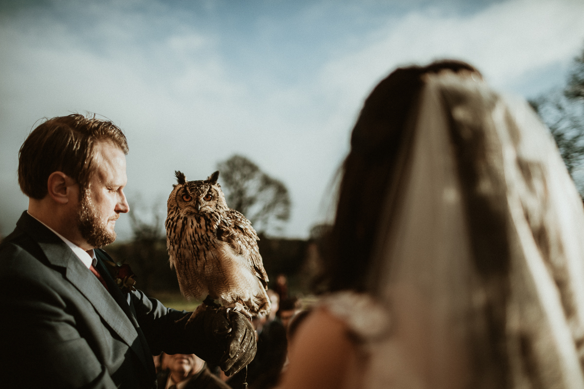 Bride, groom and owl with wedding rings